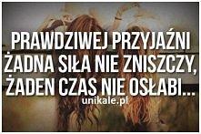 Przyjaźń ;)