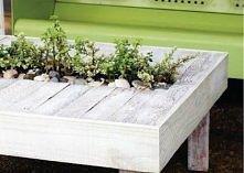 stół z miejscem na rośliny