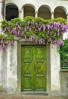 *** piękne kolory i kwitnąc...
