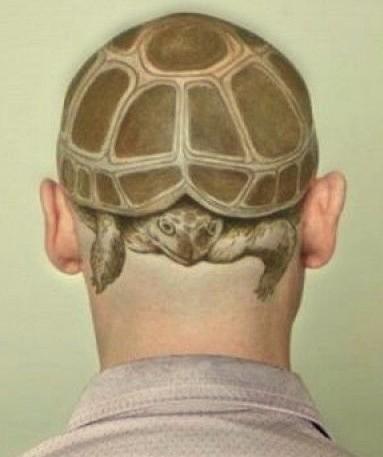 żółw Tatuaż Na Głowie Na Tatuaże Zszywkapl
