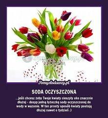 Sposób na dłuższe życie ciętych kwiatów