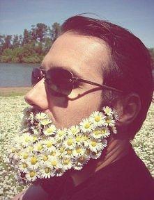 Taka sobie broda ze stokrotek. Lato się zbliża, kwiatów jest coraz więcej :)