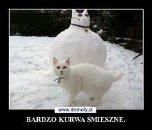 hahahaha xD