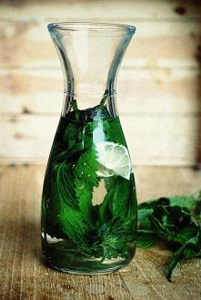 ak zrobić napój z pokrzywy?  Świeże i umyte liście pokrzywy zalewamy wrzątkiem. Napój powinien mieć barwę jasnożółtą z delikatnym odcieniem zieleni oraz intensywny, lekko gorzka...