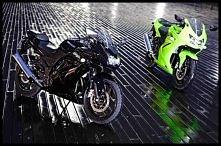 zielony czy czarny? który ładniejszy? jak dla mnie zielony :D