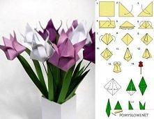 tulipan orgiami
