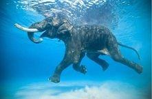 ufffff,umię pływac