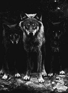 Rzuć mnie wilkom na pożarcie, a wrócę dowodząc watahą! ;)