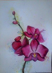 Na zywo wyglada o wiele lepiej ;D watercolour pencils. 245x345mm