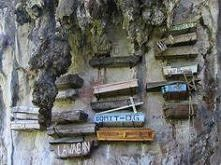 Hangging Coffin of Sagada i...