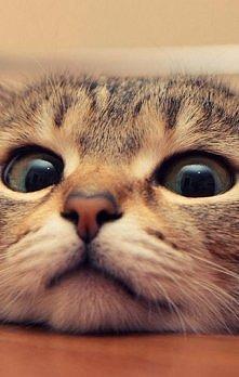 Te oczy *-*