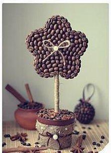 Drzewko ozdobne z kawy