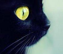 każdy ma swoją ciemną stronę