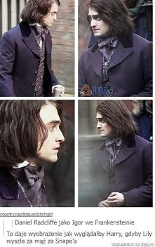 harry snape