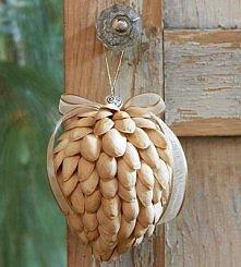 z łusek pistacji