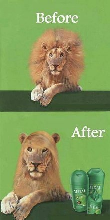 Włosy Wam się puszą? Mam na to sposób;-)