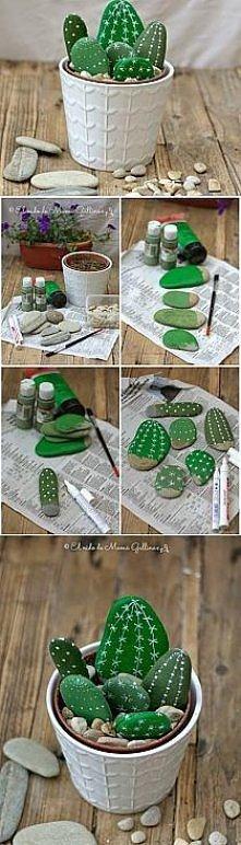Fake kaktusy;)