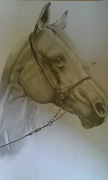 Kolejny rysunek do kolekcji :)