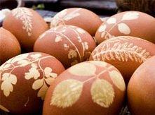 Na surowe mokre jajko przyklej kwiatki i listki. Delikatnie nałóż pończochę. Uważaj, by listki czy kwiatki nie zwinęły się i nie przesunęły.Zwiąż możliwie jak najciaśniej.Jeżeli...