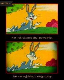 KRÓLIK BUGS - Zwariowane Me...