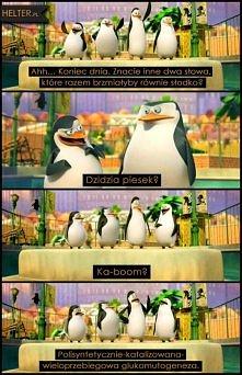 Pingwiny z Madagaskaru – Ko...