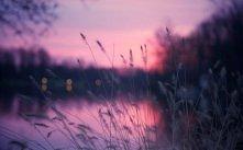 ~sky ♥ violet~