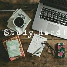 study hard ♣
