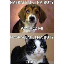 hahaha i ta mina kota :D
