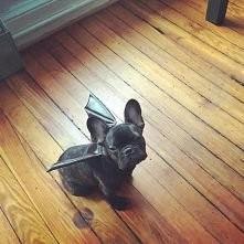 i'm batman ;D