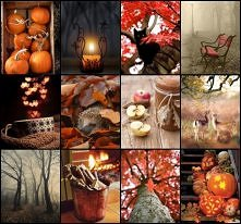 A z którym obrazkiem najbardziej Tobie kojarzy się jesień ? ✉