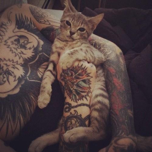Moje Dwie Miłości Koty I Tatuaże 3 Na Tattoo Zszywkapl