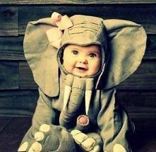 najsłodszy słonik:)