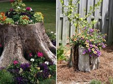 Decorate Tree Stumps