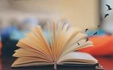Polecacie jakieś  fajne książki  ( romansidla? z namiętnościa? )