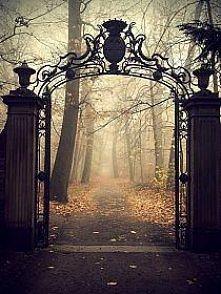Brama do tajemniczych światów?