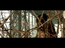 Antonia feat. Jay Sean - Wi...