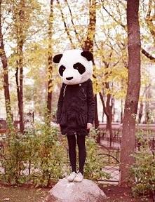 pandaa ;)