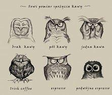 Super rysunki! Poza tym uwielbiam sowy :)