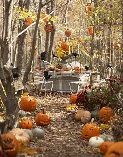 Halloween w ogrodzie