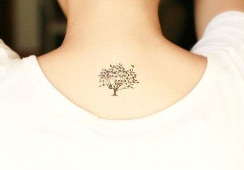 Tatuaż Drzewa Na Małe Tatuaże Zszywkapl