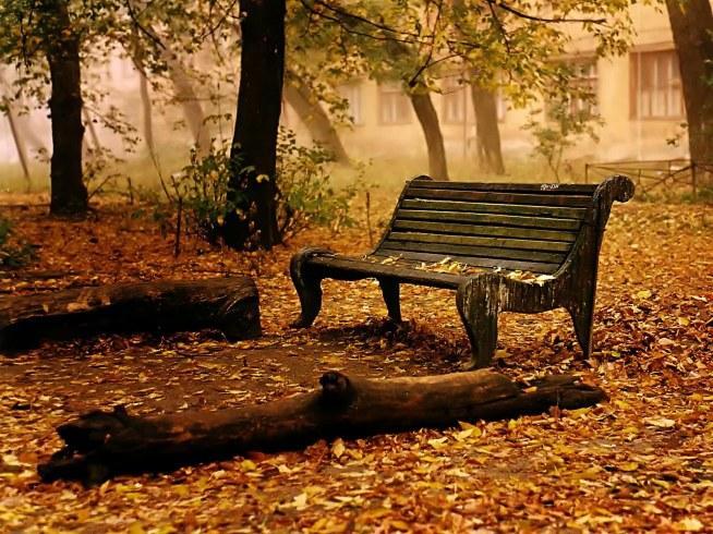 jesienna ławka...