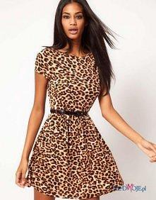 Jak myślicie mogę iść w sukience w panterkę na półmetek ?