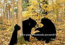 weekend! :D