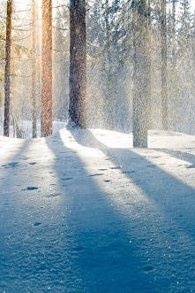 ja chcę śnieg :(