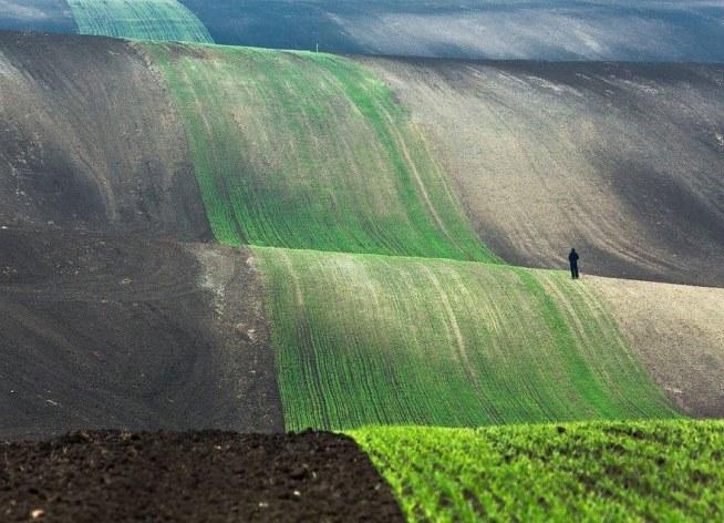 Moravia, Czech Republic | Photo: Przemyslaw Kruk :) M. WOJCIECHOWSKA