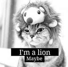 Lion :*
