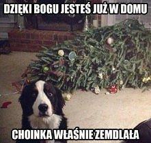 haha ;)
