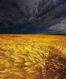 ..burza.. by Philipp Klinger.