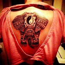 słoń na plecach
