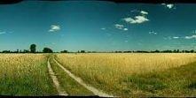 Zamieszkać na tej polanie Marzenie